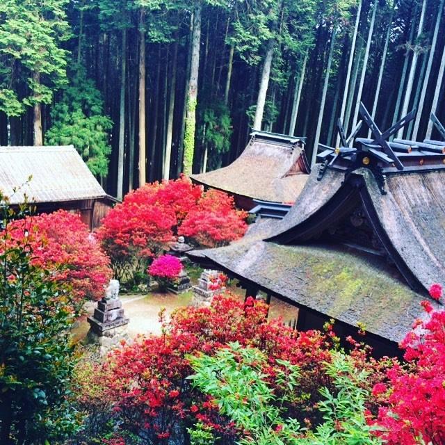 一ノ宮神社