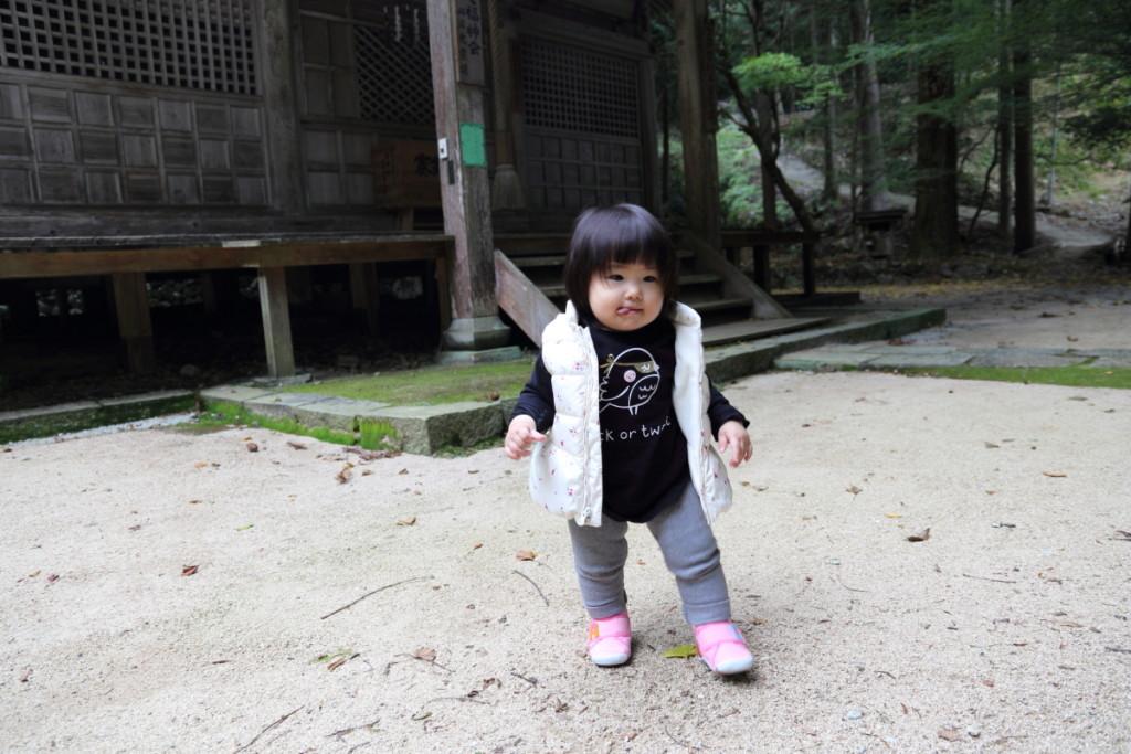 初野外散歩
